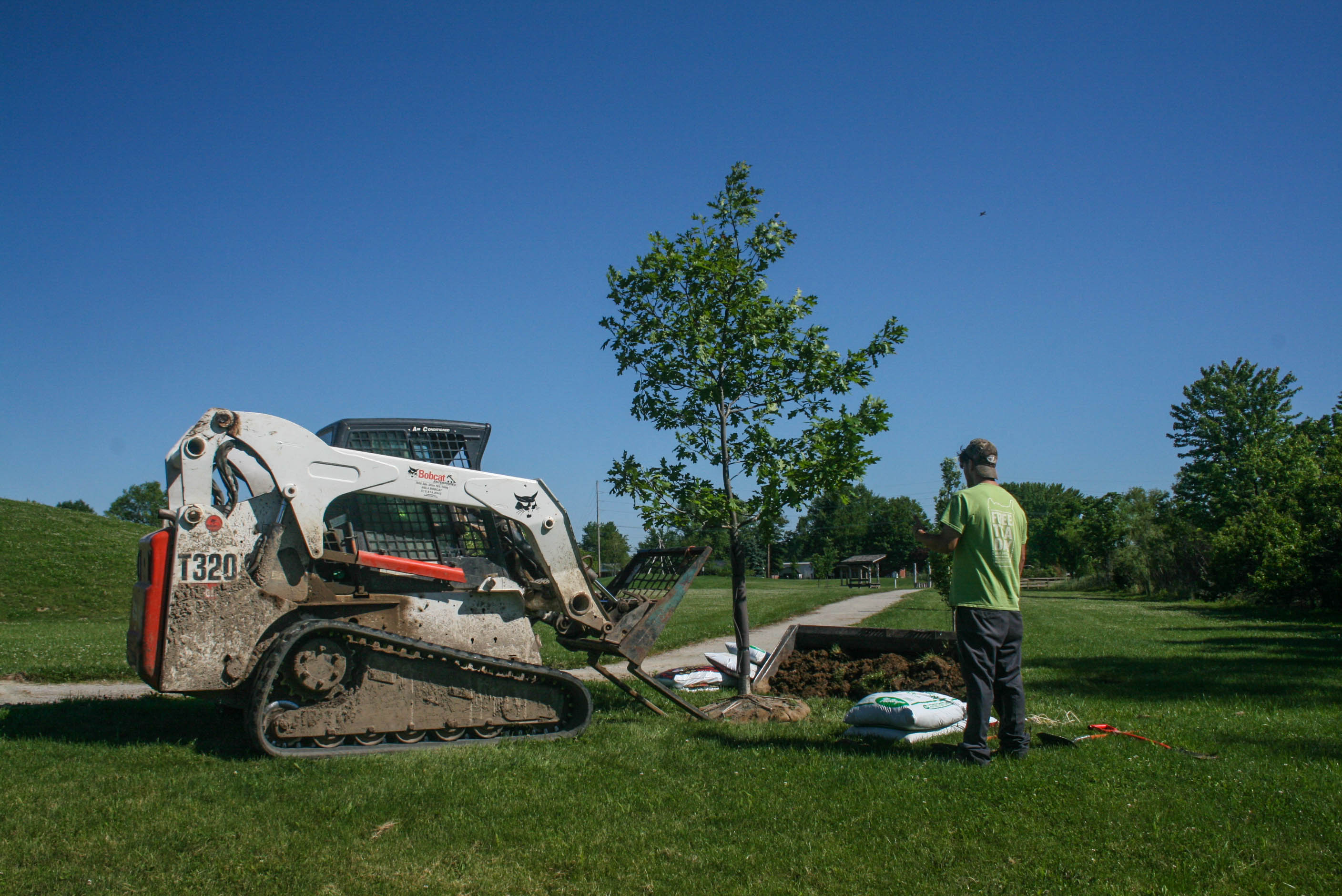 Tree donated to celebrate 2017 World Landscape Architecture Month